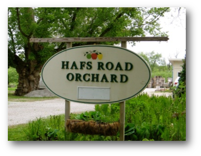 Hafs Road Orchard Sign